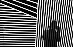 Selfie (RoryO'Bryen) Tags: selfie selfportrait stripes film blackandwhite cambridge roryobryen copyrightroryobryen leicamp 35mmsummiluxmasph leicasummiluxm35mmf14asph