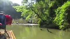 2015-121171 Rafting (bubbahop) Tags: friends film trekking river movie thailand video bamboo jungle chiangmai raft asiatrip 2015 maetang gadventures southeastasiauncovered