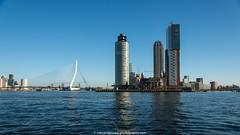 Rotterdam (view from the river) (robvanderwaal) Tags: city netherlands dutch skyline river rotterdam cityscape montevideo kopvanzuid hotelnewyork stad erasmusbrug rivier nieuwemaas 2015 nedeland rijnhaven tiengemeten28082011 rvdwaal robvanderwaalphotographycom