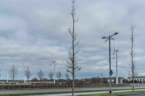 Wind Powered Public Park In Clongriffin Dublin [Father Collins Park]-111002