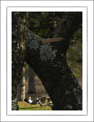 F_DSC2059-Nikon D300S-Nikkor 28-300mm-May Lee  (May-margy) Tags: portrait blur woods y bokeh lawn taiwan  picnictable    wulingfarm     cherishthemoment  taichungcity   repofchina nikond300s maymargy nikkor28300mm  maylee  mylensandmyimagination streetviewphotographytaiwan  naturalcoincidencethrumylens  linesformandlightandshadows fdsc2059