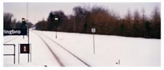ver011ennyBBJKODGB200024expo (Ilia Farniev) Tags: winter snow station publictransportation traffic enigma trail rails ichthyology chimera howl duplicity travaller divo dualism parallelism formalism alegro contingency chillyweather watchbird kooker lasosta creasote constanzia lesapres transponderlimited hypnorama freedomofplace iconoplasma hindenburgsnephew transcendentalanticipation obductionfromtheopera  empiricalpoststructuralism logicalinference ataraxiatemporalis chewinglandscape broadfreeze anaphylacticbreak
