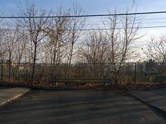 Dead End (geowelch) Tags: toronto horizon parkdale deadend urbanlandscape hedgerow urbanfragments newtopographics olympusomdem5 panasoniclumixvario1445mm