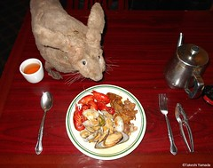 Dr. Takeshi Yamada and Seara (Coney Island sea rabbit) at the East Ocean Chinese Buffet in Brooklyn, NY on January 9, 2016. This is their favorite Chinese restaurant in New York.  20160109Sat DSCN3309=C1 (searabbits23) Tags: nyc ny newyork sexy celebrity art fashion animal brooklyn painting asian coneyisland japanese star tv google king artist dragon god manhattan wildlife famous gothic goth chinese performance pop taxidermy cnn tuxedo bikini portraiture tophat unitednations playboy entertainer takeshi samurai genius donaldtrump mermaid amc johnnydepp mardigras salvadordali unicorn billclinton hillaryclinton billgates aol vangogh curiosities sideshow jeffkoons globalwarming takashimurakami pablopicasso steampunk yamada damienhirst cryptozoology freakshow barackobama seara immortalized takeshiyamada museumofworldwonders roguetaxidermy searabbit ladygaga climategate