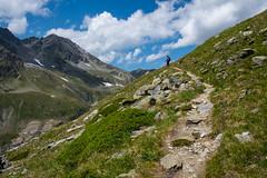 Turtmanntal 21 (jfobranco) Tags: summer alps switzerland suisse wallis valais turtmanntal