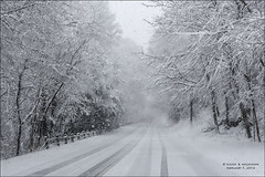 WINDSWEPT WHITEOUT (susies.genii) Tags: road trees snow weather scenery outdoor snowstorm streetscene winterscene throughwindshield whiteoutconditions february52016