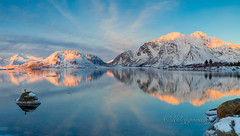 blue and gold morning (pixellesley) Tags: ocean morning lake snow seascape mountains ice water norway sunrise reflections landscape still quiet calm arctic fjord lofoten tranquil lesleygooding