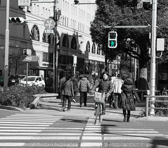 Tokyo (SMSidat) Tags: city trip travel vacation people blackandwhite holiday travelling tourism bicycle japan cycling tokyo crossing citylife tourist wanderlust traveller cycle yolo