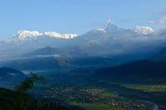 Chaine des Annapurnas (Bertrand de Camaret) Tags: nepal sunrise asia ngc asie himalaya annapurna nationalgeographic leverdesoleil sommet vallee machapuchare horizontale bertranddecamaret