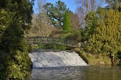Under the bridge... (stavioni) Tags: park brown lake garden sussex sheffield national trust capability