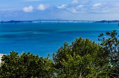 _DSC4589--Richmond-San Rafael Bridge, CA (Lance & Cromwell back from a Road Trip) Tags: travel sony roadtrip marincounty sanfranciscobay richmondsanrafaelbridge sonyalpha