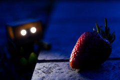 [Danbo] Midnight Snack (lenanu) Tags: blue light shadow eye fruit night 35mm licht eyes strawberry nikon nacht bokeh watching desire hunger glowing hungry blau augen hiding distance schatten auge leuchtend erdbeere glowingeyes schärfentiefe nachts obst observing versteckt danbo seperated beobachten appetite hungrig distanz appetit tiefenschärfe verlangen getrennt lenanu