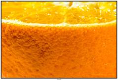 IMG_8374 (tuxoche) Tags: orange geotagged flickr orte deu genre deudeutschland geolocation macrophotos veröffentlicht camera:make=canon camera:model=canoneos400ddigital exif:make=canon exif:focallength=100mm exif:model=canoneos400ddigital exif:lens=ef100mmf28macrousm exif:aperture=ƒ16 2published exif:isospeed=100 pushflickrcommunity 0flickrpublished 1pinterestpublished