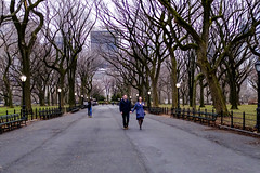 Casey and Danielle Engagement NYC-0555-213-211 (SJ Martinez) Tags: engagement centralpark themall bethesdafountain xf23mm fujixt1 caseygeller daniellecomeaux newyorkcity2016