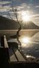 Sun Rise - 24/2/16 (peterdouglas1) Tags: trees sunrise reflections llanberis snowdonia llynpadarn thattree
