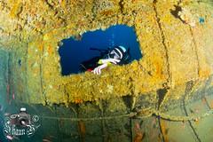 Dolphin 1 (ShaunMYeo) Tags: scubadiving gibraltar wrecks littlebay calpe underwaterphotography  gibilterra ikelite artificialreef   dolphin1    gibraltr  cebelitark gjibraltar ibraltaro hibraltar xibraltar giobrltar gibraltrs gibraltaras ibilt