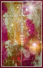 Pan de vida eterna. (IDIAY) Tags: luz amor paz jess cristianos sangredecristo renacer resucitar