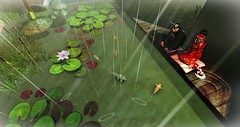 Nature's shower (Chioma Namiboo Jinn) Tags: pets fish home rain sl secondlife koi kimono ponds windlight slphotography secondlifesecondlife secondlifefashion secondlifephotography slwindlight secondlifeexploration slmarketplace secondlifeculture