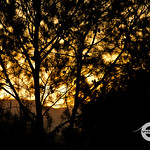 Murrieta Sunset