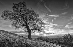 Croft Hill Sunset (John__Hull) Tags: sunset nature clouds landscape countryside nikon leicestershire breath sigma taking 1020mm d3200