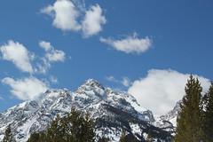 Grand Teton on the trail 2 (Aggiewelshes) Tags: travel winter snow mountains landscape scenery april snowshoeing wyoming jacksonhole grandtetonnationalpark 2016 gtnp taggartlaketrail