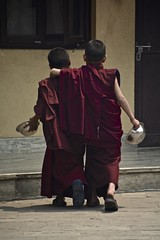 Together (Antonio Cinotti ) Tags: nepal nikon asia buddhist monastery kathmandu buddhistmonks pharping d7100 nikon1685 nikond7100 nepalroutes