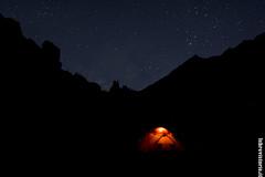Notti stellate
