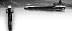 Thales (tim-wolverson) Tags: ship riverseine thales laseine seinemaritime labouille