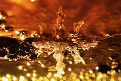 bckyd 016 (Marco Biankovitch) Tags: castle strange photoshop ir golden reflex nikon shiny upsidedown space dourado infrared imagination inverted reflexo raro infravermelho d60 joia invertida waterreflex bizare pontacabea 720nm minilandscape reflesso nikond60 goldencolour nikcolletion