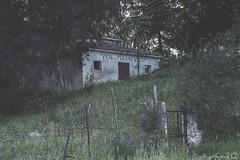 Terme abbandonate San Saturnino (Woodhandicraft90) Tags: house abandoned vintage rusty oldhouse abandonedhouse spa terme abandonedplaces
