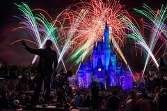 All Their Wishes Part 2 (TheTimeTheSpace) Tags: fireworks disney disneyworld wishes waltdisneyworld magickingdom partners cinderellacastle nikon247028 nikond800