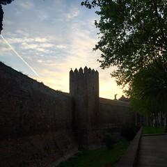 El guardin de la #muralla #contraluz #igersbcn #BCN #Barcelona #wall #fort #sun #sol #amanecer #atardecer #sunshine #sunrise #sunset #gaviota #seagull #perfil #silueta #shapes (Carolina_BCN) Tags: barcelona sunset sun sol sunshine wall sunrise contraluz atardecer fort perfil seagull bcn shapes amanecer silueta gaviota muralla igersbcn