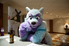 "I think my next #Vlog is going to take a bit, because there is nothing ""big"" happening in the near future >.< So I would like to give it a try again, to answer questions in it :3 Please ask me something! :D Just post a question as comment here or on any o (Keenora Fluffball) Tags: furry kee fursuit keenora"