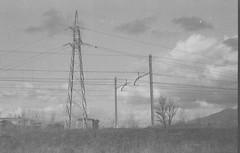electric (pumobelix) Tags: blackandwhite rail pylon foma caffenol fomapan fomacreative