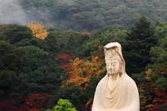 A drizzling autumn morning in Kyoto, Japan. (Go Go Janet) Tags: travel mountain statue japan kyoto   mercy autumnscene mists  hugestatue  mountainbackground autumnmountain colorfulmountain getwetintherain