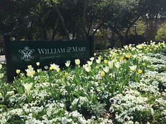 Love that new sign! (William & Mary Photos) Tags: flowers sign corner spring scenery tulips wm williamandmary confusion williammary collegeofwilliamandmary collegeofwilliammary