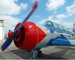Vintage Warbird (EX22218) Tags: airport kentucky aviation louisville thunderoverlouisville derbyfestival warplanes bowmanfield vintagewarbirds thunderairshow thunder16