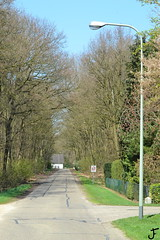 Schrder DM1 (f O h O) Tags: nederland limburg lantaarnpaal ral dm1 lichtmast 7033 schreder armatuur