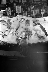Pike fish market (Bob Butterfield Photography) Tags: seattle leica trix summicron pikeplace m3