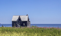 House on the Ocean (Danny VB) Tags: ocean flowers summer house canada canon eos sigma august qubec 7d gaspsie 30mm