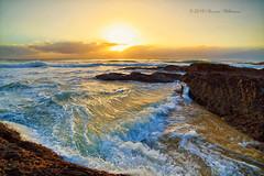 Golden Light (Sharna Wilkinson) Tags: ocean light sea beach canon outdoors gold rocks coastal surfers colourful firstlight goldcoast canonaustralia canon5dmarkiii colourofday