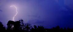 Anglų lietuvių žodynas. Žodis thunder reiškia 1. n griausmas, perkūnas; 2. v 1) griausti, dundėti; 2) siausti; triuškinti; griaudėti, šaukti lietuviškai.