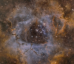 The Rosette Nebula in HST(Hubble Space Telescope) Palette***Reprocessed*** (Chuck Manges) Tags: ccd celestron ngc2237 ngc2244 qhy ngc2238 ngc2239 astrometrydotnet:status=solved hyperstar monoceres caldwell49 qhy9m qhy23m astrometrydotnet:id=nova1409142