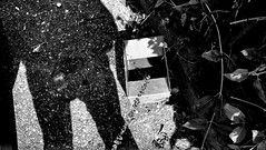 (n.genez) Tags: street pee mobile weird blackwhite lyon cellphone motorola
