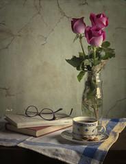 Tres rosas y un caf (Ivannia E) Tags: stilllife textura caf bodegn libros rosas naturemorte naturalezamuerta cafygalletas