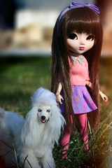 Arabella and Prince ADAW 4/52 (AntiqueWolf) Tags: 2005 pink winter dog brown sun white flower cute green grass sunshine modern century vintage hair puppy toy toys photography sweater amazing shoes rocks doll pretty dolls shine purple post sweet barbie adorable style prince tights skirt poodle wigs pullip blythe 1989 pup bangs dolly zero greggia mid pupper licca headband coolcat 2016 posable dolled dolld obitsu eyechips adaw relashes