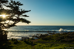 Cambria Starburst (dennisjohnston17) Tags: ocean california beach waves cambria starburst
