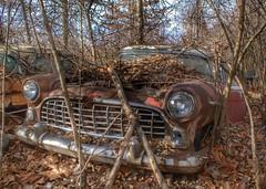 DSC08563.ARW-01 (juice95m3) Tags: abandoned rust vintagecar automobile junkyard oldcars classiccars