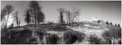 Baumlandschaft mit Burgruine Voitsberg