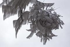 _MG_1072 (schamrock77) Tags: winter italy mountain ice freezing natura inverno montagna friuli ghiaccio galaverna canon6d 35f2is